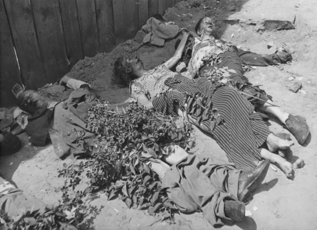 Тіла жертв НКВД у львівській в'язниці (фотографія з архіву Меморіального Музею Голокосту у США)